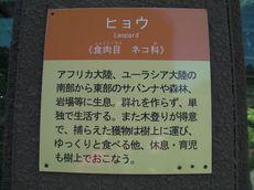 fuji_safari3.jpg