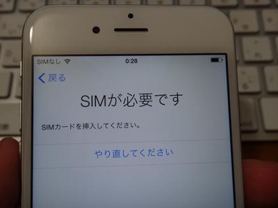 DSC08545.jpg