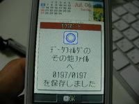 SANY1241.JPG